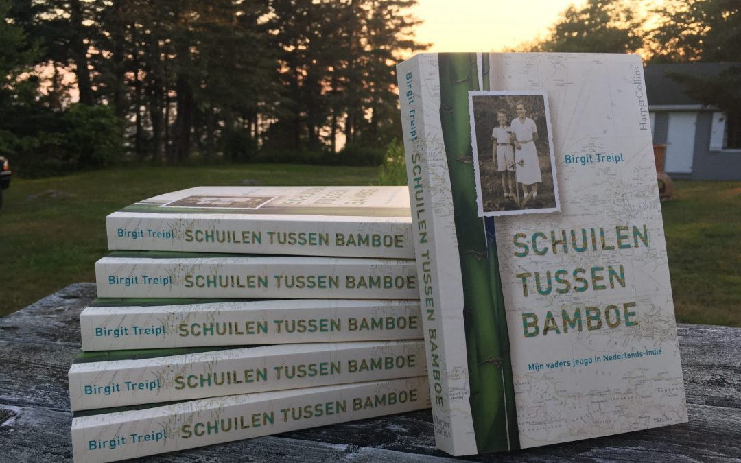 'Schuilen tussen bamboe' translated into English
